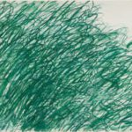 twombly-returning-from-tonnicoda